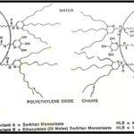 Kontribusi Dispersan Kimiawi dan Biosurfaktan  Terhadap Biodegradasi Minyak Bumi