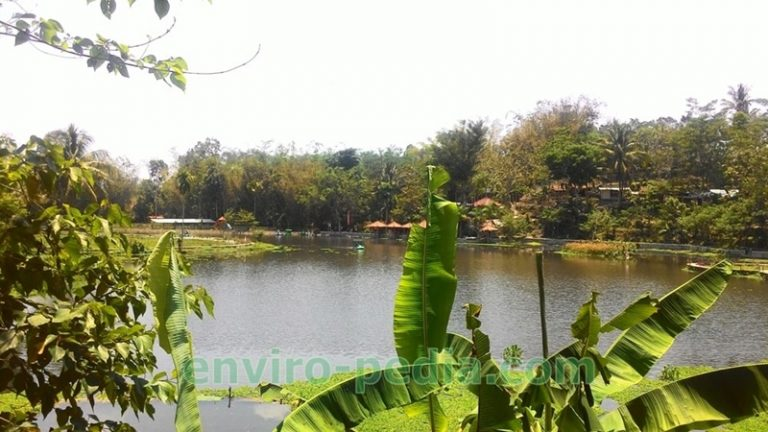 Cara Mewujudkan Desa Berkelanjutan   Enviropedia